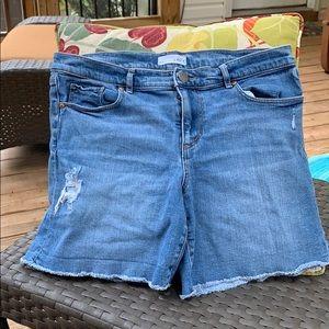 """Loft jean shorts size 10/30"""" waist"""